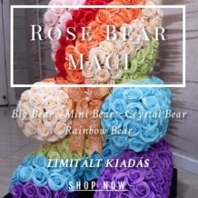 Rose bear maci mini & big